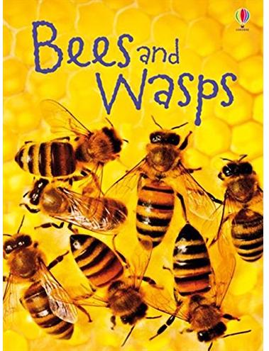 Bees-wasps