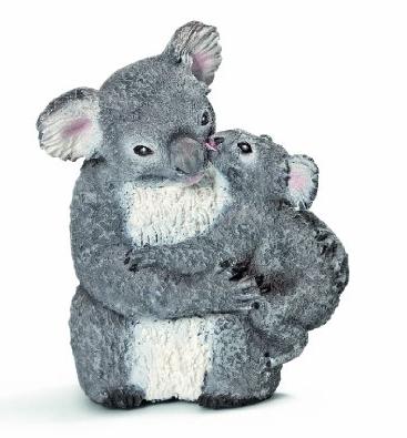 Koala Bear Cub
