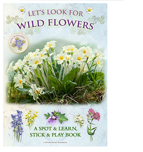 Look for Wild Flowers